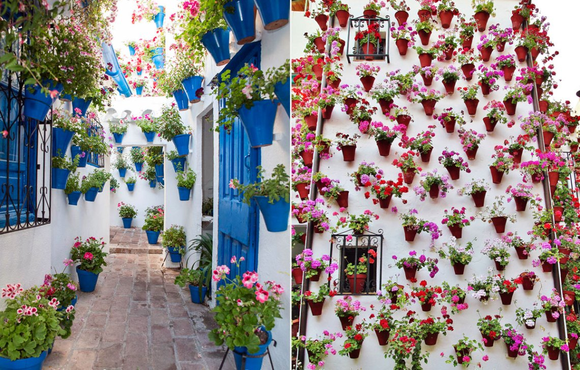 Narrow streets of Cordoba with vegetation and plants on walls