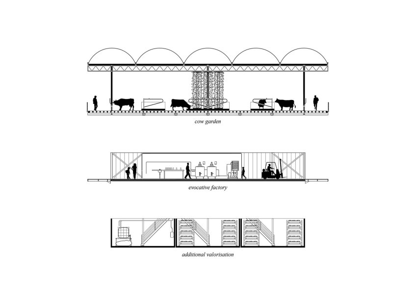 Conceptual Section of Farm by GOLDSMITH Company.