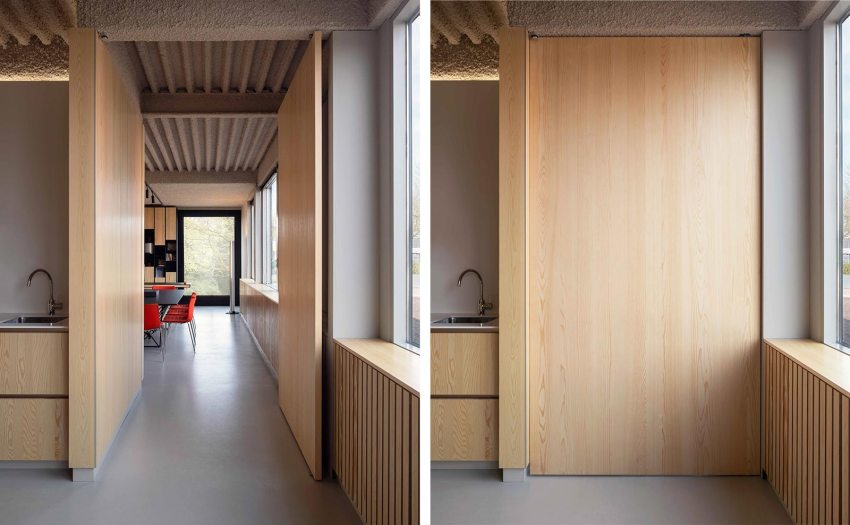 Wood Modern Pivot door