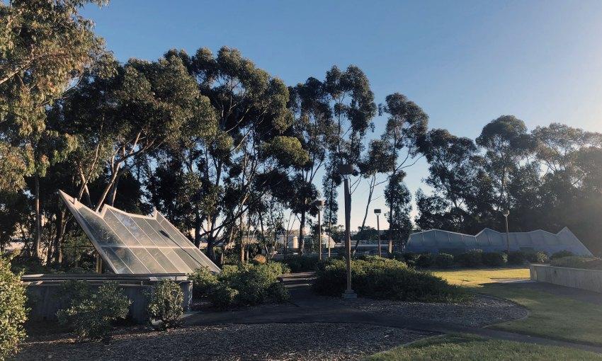 Exterior Vegetation and skylights