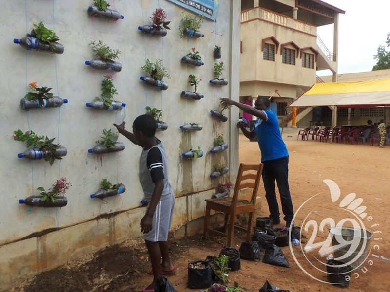 BENIN.developpement-durable-un-jardin-mural-par-lassociation-229-efficience-2