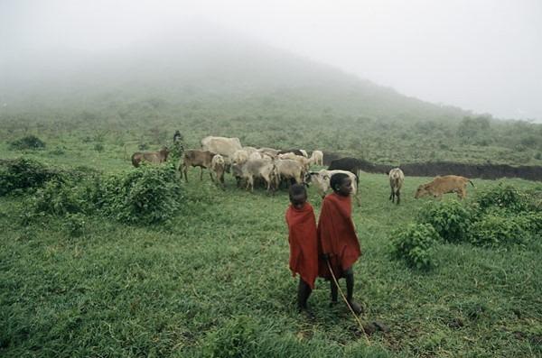 album-photos-lafrique-de-a-a-z-paysages-cultures-tourisme-et-decouverte-41
