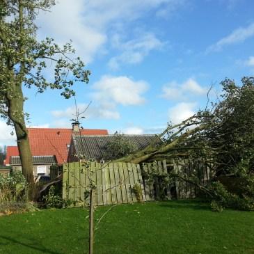2013-10-28 Stormschade Veele