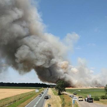 16-07-2018 Buitenbrand Wedde korenveld ( Zeer grote brand )
