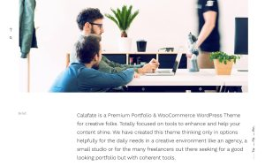 Calafate Best WordPress Portfolio Themes