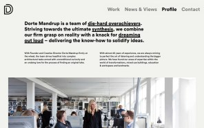 Dorte Mandrup - Best Architecture Websites 2018