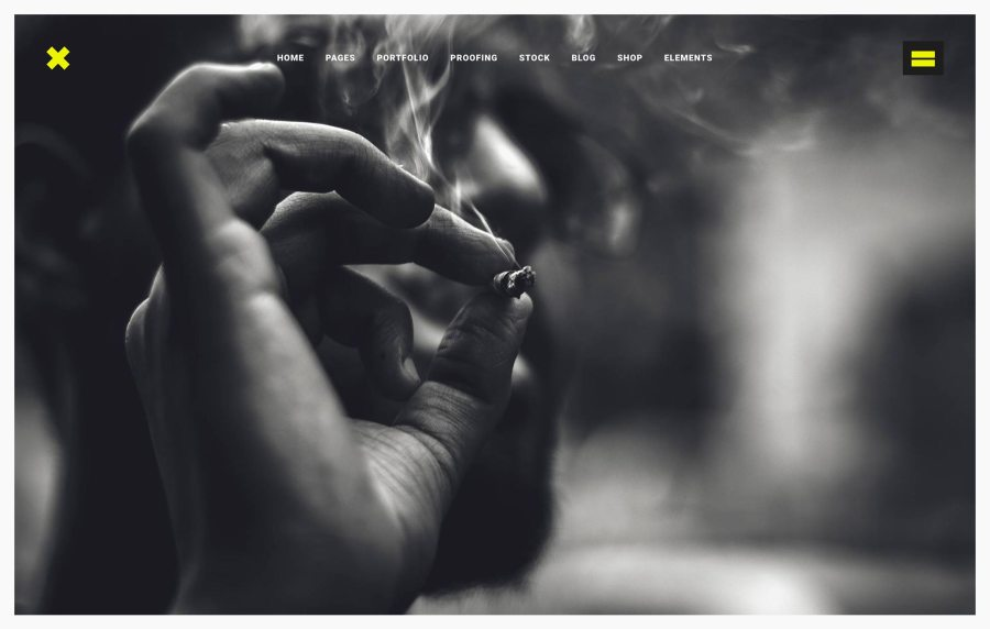 Fierce Best Photography WordPress Themes
