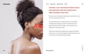 Umbrella Best Photography WordPress Themes