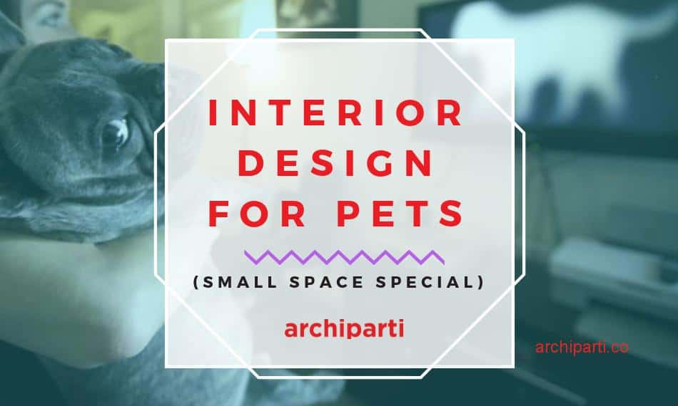 Design for Pets in 2021: This Interior Design Expert Has Something Serious To Say. You Might Not Like It, But You'll Probably Love It