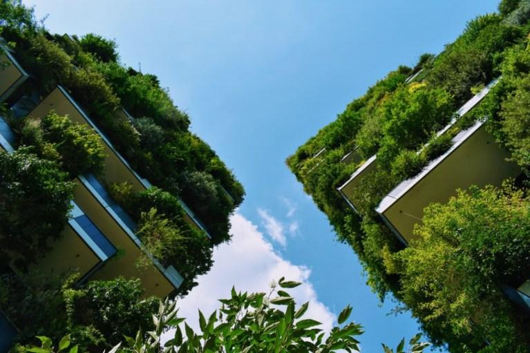 【辦公空間綠化設計2020】如何提高資源效率,加強廢物管理,建立可持續性的后疫情時代辦公室文化?