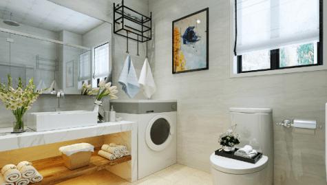 【環保家居設計2021】10種適合廁所洗手間的室內植物