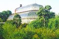 botanic_greatpalmhouse_lge