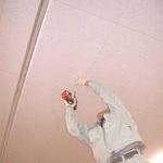 「ジプトーン」が世界の天井を制覇するエックスディー!
