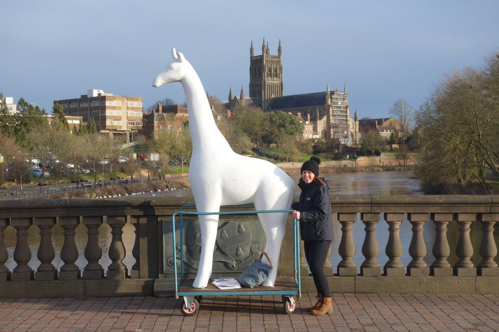 Worcester Stands Tall Image
