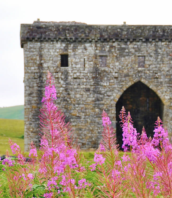 hermitage-castle-featured