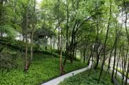 the-hillside-eco-park-10