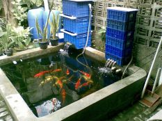 Adding Filter and Water Pump in The Fish Pond for Awesome Tips for Placing a Fish Pond in the Family Room