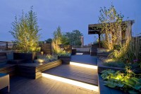 Beautiful Rooftop Garden Lighting