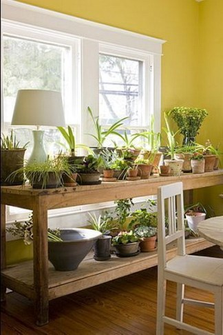 Beautiful And Charming Indoor Garden Designs Ideas (104)