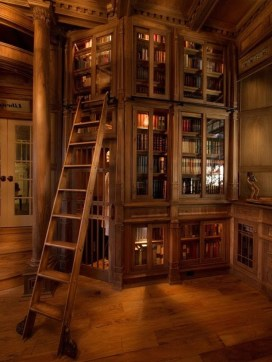 Home Library Design Ideas (12)