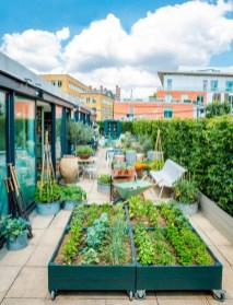 Preparing Planting Media for Make a Beautiful and Attractive Rooftop Garden
