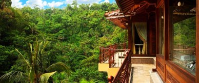 Rain Forest Hotel Idea Bali Tropical Design Traditional Suspended Balinese Wood Villa Modern Resort Awesome Riverside Lush With Coconut Tree Chic Vintage Dining Table And Chair Set