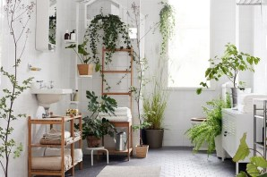 The Garden For A Nice Bathroom Beautiful And Charming Indoor Garden Designs