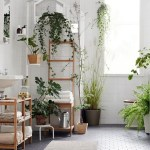 The Garden For A Nice Bathroom For Beautiful And Charming Indoor Garden Designs