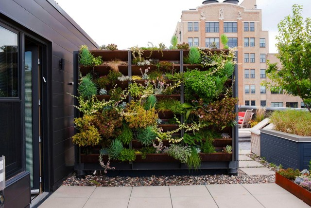 Use The Vertical Room Rooftop Garden
