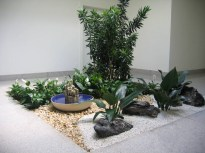 Zen Sea Park For Beautiful And Charming Indoor Garden Designs