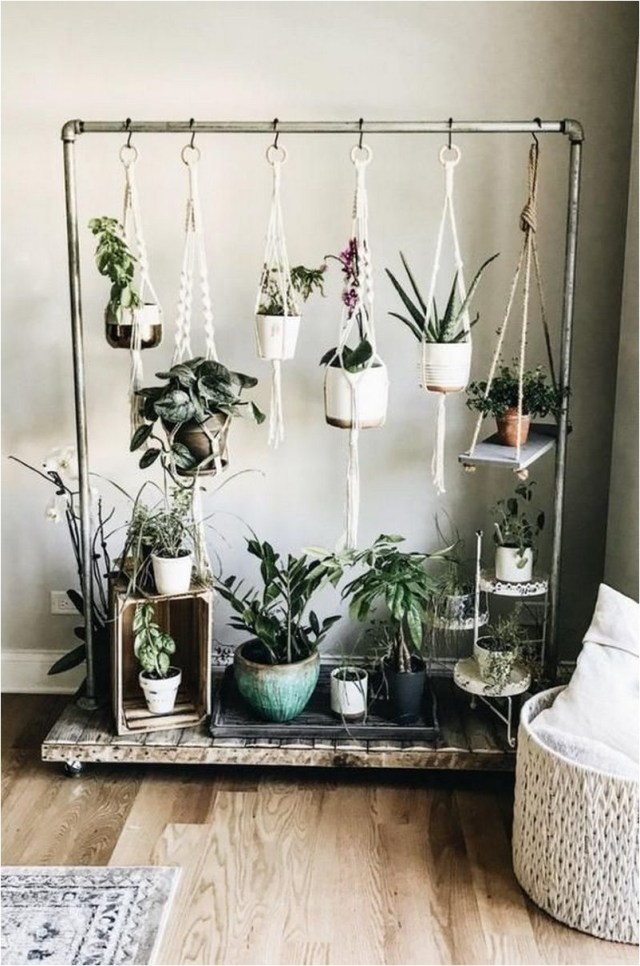 Indoor Pipe Hanging Plant