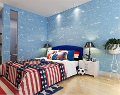 Bedroom Ideas For Teen Boys With Wallpapers And Animations