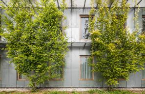 Dwelling House for Students, Barcelona / HARQUITECTES