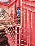 The Pink Zebra-RENESA Architecture Studio
