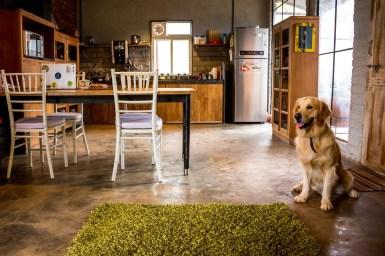 ResQ Home at Pune - Studio Osmosis