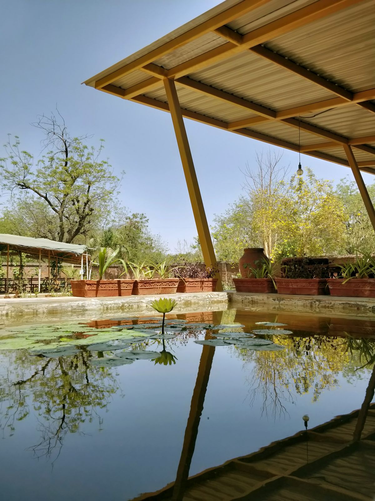 Kamala Cafe, Experiential journey in Nature's bliss, by Studio Praxis 16