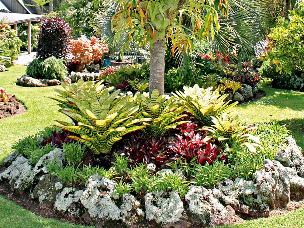 Make your Garden Tropical With These Tropical Garden ... on Tropical Backyard Landscaping Ideas  id=97770