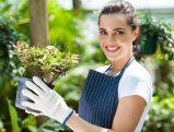 comment-jardiner-au-naturel