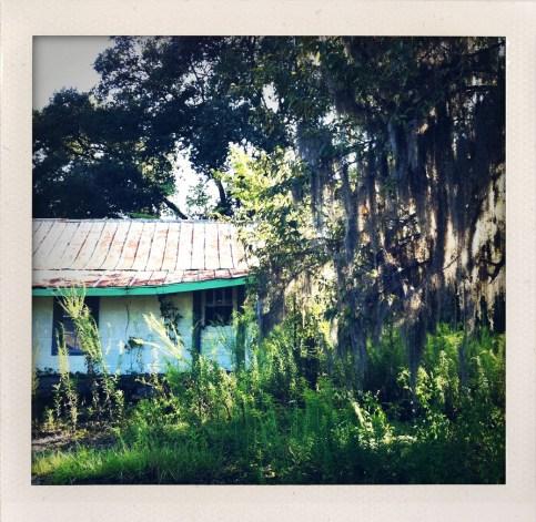 True Blood country in Louisiana