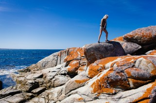 The orange lichen covered rocks at Bay of Fires