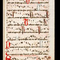 557 codex