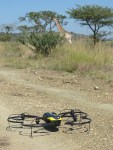 Drones in Conservation