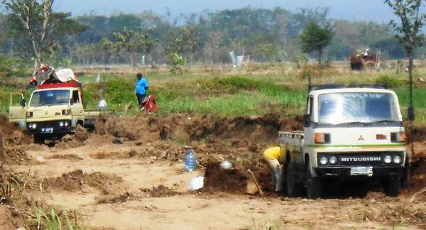 Indonesian farmers harvesting rice