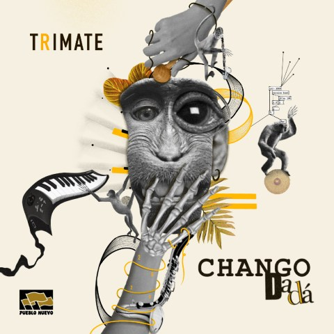 Chango Dada – Trimate