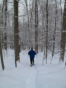A snowy hike in the Adirondack woods.