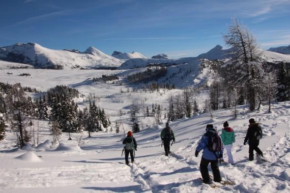 Snowshoers at Sunshine Meadows, Banff