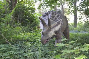 A 14-foot-long triceratops lawn ornament stands in front of Mark Hadzega's home on Acme Drive in Middlebury. Alexandra Pape/RA