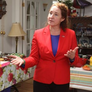 U.S. Rep. Elizabeth Esty addresses the crowd at a gathering of Democratic officials from the 30th state Senate District and the 66th state House District at the home of Democratic State Central Committee member Audrey Blondin of Litchfield on Saturday. Representatives of many of the 15 municipalities in the 30th District attended the event that served as a pep rally for the November election. John McKenna Republican-American