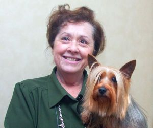WATERBURY CT- FEBRUARY 2015 020415DA07- Doreen Weintraub of Killingworth holds her silky terrier Bree on Wednesday. The pair will take part in competing in the 139th Annual Westminster Kennel Club Dog Show Feb. 16-17 in NYC. Darlene Douty Republican American