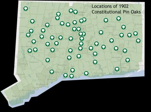 This map shows the locations of the 59 remaining 1902 Constitutional Pin Oaks. The trees were planted in 1902 after the state held a constitutional convention. Then Connecticut had 168 tows, and each delegate returned home with a seedling. Alec Johnson/ Republican-American